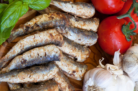 Sardines Baked in Tomato Sauce with basil